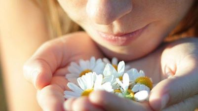 aroma pharmadus infusiones gourmet té online